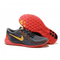 Nike Free 5.0 V2 Holzkohle/Grau/Rot Damen Schuh